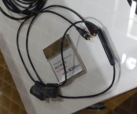 DSC06239