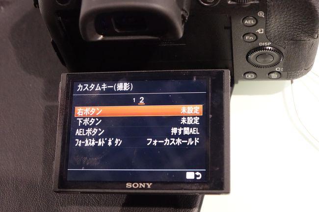 DSC-RX10M3_0030