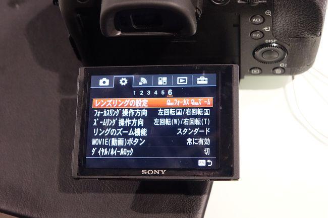 DSC-RX10M3_0031